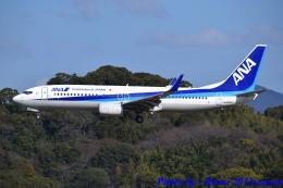れんしさんが、福岡空港で撮影した全日空 737-881の航空フォト(飛行機 写真・画像)