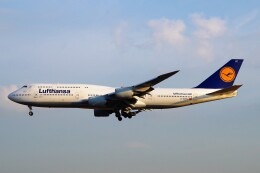 ちっとろむさんが、フランクフルト国際空港で撮影したルフトハンザドイツ航空 747-830の航空フォト(飛行機 写真・画像)