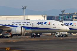latchさんが、伊丹空港で撮影した全日空 787-8 Dreamlinerの航空フォト(飛行機 写真・画像)