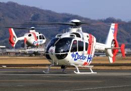 LOTUSさんが、八尾空港で撮影した学校法人ヒラタ学園 航空事業本部 EC135P2+の航空フォト(飛行機 写真・画像)