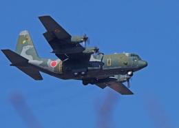がいなやつさんが、福岡空港で撮影した航空自衛隊 C-130H Herculesの航空フォト(飛行機 写真・画像)
