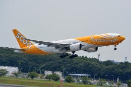 amarumeさんが、成田国際空港で撮影したスクート (〜2017) 777-212/ERの航空フォト(飛行機 写真・画像)