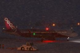 小牛田薫さんが、女満別空港で撮影したピーチ A320-214の航空フォト(飛行機 写真・画像)
