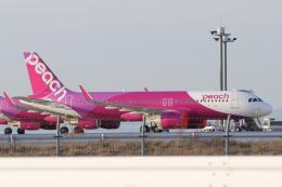 singapore346さんが、関西国際空港で撮影したピーチ A320-251Nの航空フォト(飛行機 写真・画像)