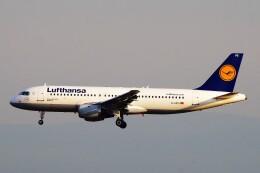 航空フォト:D-AIPS ルフトハンザドイツ航空 A320