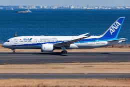 KoshiTomoさんが、羽田空港で撮影した全日空 787-8 Dreamlinerの航空フォト(飛行機 写真・画像)