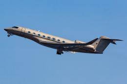 KoshiTomoさんが、羽田空港で撮影したプライベートエアの航空フォト(飛行機 写真・画像)