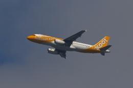 fox_samさんが、ニノイ・アキノ国際空港で撮影したスクート A320-232の航空フォト(飛行機 写真・画像)