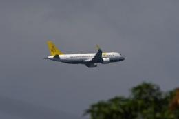 fox_samさんが、ニノイ・アキノ国際空港で撮影したロイヤルブルネイ航空 A320-251Nの航空フォト(飛行機 写真・画像)