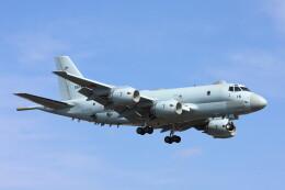 だびでさんが、厚木飛行場で撮影した海上自衛隊 P-1の航空フォト(飛行機 写真・画像)