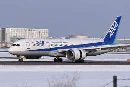 YouKeyさんが、新千歳空港で撮影した全日空 787-8 Dreamlinerの航空フォト(飛行機 写真・画像)