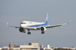 徳兵衛さんが、伊丹空港で撮影した全日空 A321-272Nの航空フォト(飛行機 写真・画像)
