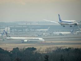 sunrise21さんが、成田国際空港で撮影したシンガポール航空 787-10の航空フォト(飛行機 写真・画像)