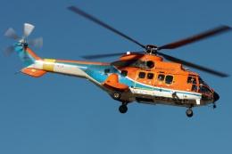 ブルーさんさんが、静岡ヘリポートで撮影した新日本ヘリコプター AS332L1 Super Pumaの航空フォト(飛行機 写真・画像)
