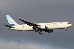 HADAさんが、成田国際空港で撮影したユーロアトランティック・エアウェイズ 767-34P/ERの航空フォト(飛行機 写真・画像)