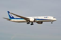@たかひろさんが、成田国際空港で撮影した全日空 787-9の航空フォト(飛行機 写真・画像)