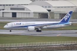 NIKEさんが、那覇空港で撮影した全日空 787-8 Dreamlinerの航空フォト(飛行機 写真・画像)