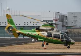 チャーリーマイクさんが、東京ヘリポートで撮影した中日本航空 AS365N2 Dauphin 2の航空フォト(飛行機 写真・画像)