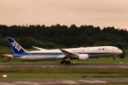 inyoさんが、成田国際空港で撮影した全日空 787-10の航空フォト(飛行機 写真・画像)