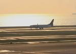 ふじいあきらさんが、羽田空港で撮影したスカイマーク 737-8HXの航空フォト(写真)