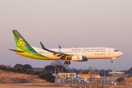 SGR RT 改さんが、成田国際空港で撮影した春秋航空日本 737-86Nの航空フォト(飛行機 写真・画像)