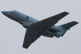 Hariboさんが、名古屋飛行場で撮影した航空自衛隊 U-125A(Hawker 800)の航空フォト(飛行機 写真・画像)
