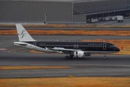 Matyaruさんが、羽田空港で撮影したスターフライヤー A320-214の航空フォト(飛行機 写真・画像)