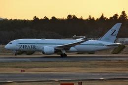 あまるめさんが、成田国際空港で撮影したZIPAIR 787-8 Dreamlinerの航空フォト(飛行機 写真・画像)