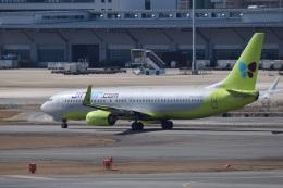 bachi51さんが、福岡空港で撮影したジンエアー 737-8Q8の航空フォト(飛行機 写真・画像)