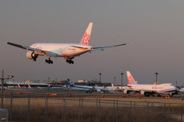 JA1118Dさんが、成田国際空港で撮影したチャイナエアライン 777-Fの航空フォト(飛行機 写真・画像)