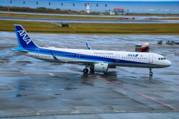 えのびよーんさんが、那覇空港で撮影した全日空 A321-272Nの航空フォト(飛行機 写真・画像)