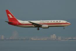 Deepさんが、関西国際空港で撮影した上海航空 737-8Q8の航空フォト(飛行機 写真・画像)