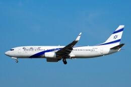 ちっとろむさんが、フランクフルト国際空港で撮影したエル・アル航空 737-8HXの航空フォト(飛行機 写真・画像)