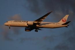 SIさんが、成田国際空港で撮影した日本航空 787-9の航空フォト(飛行機 写真・画像)