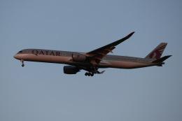SIさんが、成田国際空港で撮影したカタール航空 A350-1041の航空フォト(飛行機 写真・画像)
