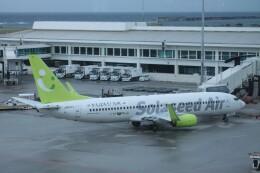 Mr.boneさんが、那覇空港で撮影したソラシド エア 737-81Dの航空フォト(飛行機 写真・画像)