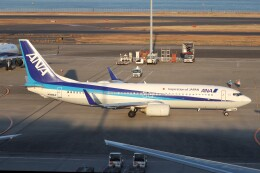 hanatomo735さんが、羽田空港で撮影した全日空 737-881の航空フォト(飛行機 写真・画像)