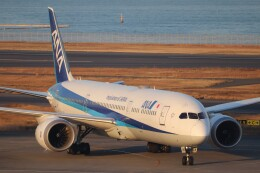 hanatomo735さんが、羽田空港で撮影した全日空 787-9の航空フォト(飛行機 写真・画像)