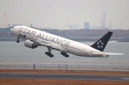 hanatomo735さんが、羽田空港で撮影した全日空 777-281の航空フォト(飛行機 写真・画像)