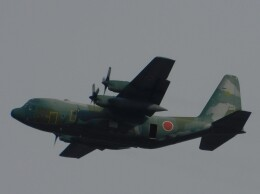 さんまるエアラインさんが、習志野演習場で撮影した航空自衛隊 C-130H Herculesの航空フォト(飛行機 写真・画像)