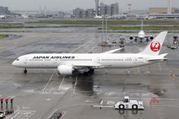 Echo-Kiloさんが、羽田空港で撮影した日本航空 787-9の航空フォト(飛行機 写真・画像)