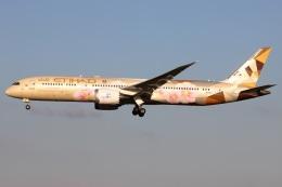 たみぃさんが、成田国際空港で撮影したエティハド航空 787-9の航空フォト(飛行機 写真・画像)