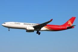 たみぃさんが、成田国際空港で撮影した深圳航空 A330-343Xの航空フォト(飛行機 写真・画像)