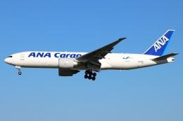 たみぃさんが、成田国際空港で撮影した全日空 777-F81の航空フォト(飛行機 写真・画像)