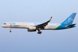 たみぃさんが、成田国際空港で撮影したアビアスター 757-223の航空フォト(飛行機 写真・画像)