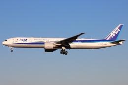 たみぃさんが、成田国際空港で撮影した全日空 777-381/ERの航空フォト(飛行機 写真・画像)