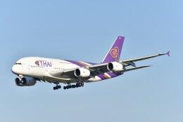 kotaちゃんさんが、成田国際空港で撮影したタイ国際航空 A380-841の航空フォト(飛行機 写真・画像)
