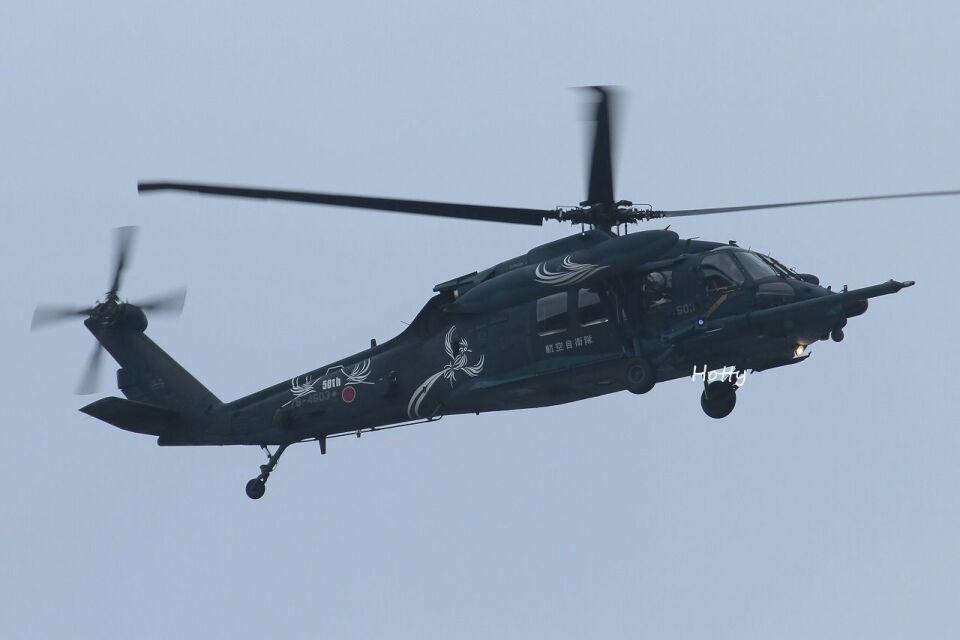 Hottyさんの航空自衛隊 Mitsubishi UH-60J (78-4603) 航空フォト