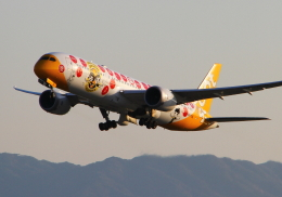LOTUSさんが、関西国際空港で撮影したスクート (〜2017) 787-9の航空フォト(飛行機 写真・画像)