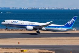 KoshiTomoさんが、羽田空港で撮影した全日空 787-9の航空フォト(飛行機 写真・画像)